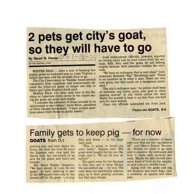 2 pets get city's goat so they will have to go